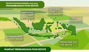 Food Estate, Bukan Solusi Atasi Krisis Pangan saat Pandemi