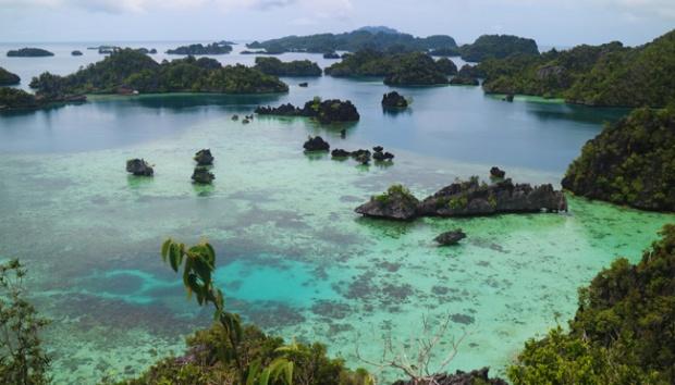 Envirotalk: Patgulipat Bisnis Tambang dan Nasib Pulau-Pulau Kecil yang Dicaplok Izin Tambang